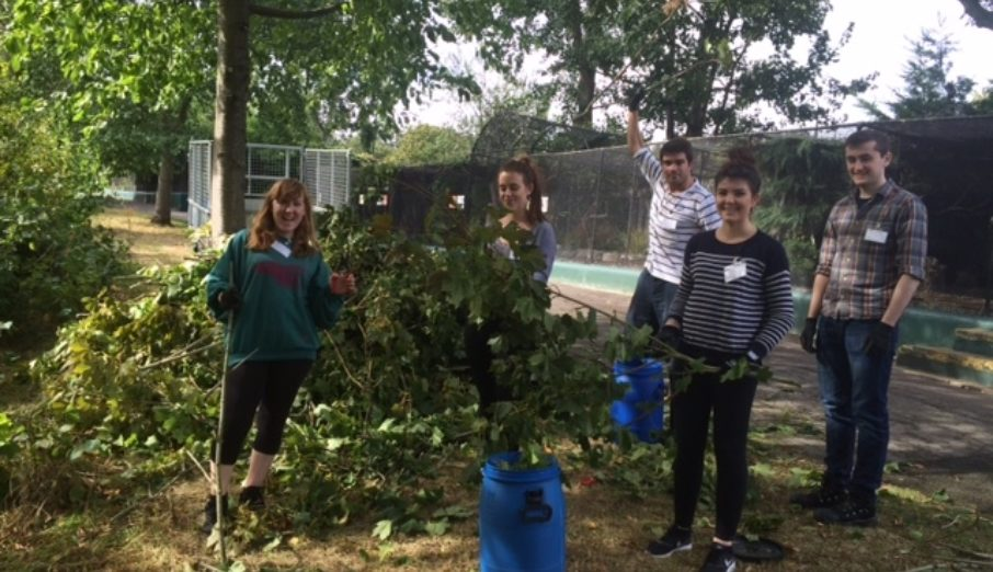 For many years Paper Round have been working with The Zoological Society of London (ZSL), and as part of our long standing relationship every year we have a volunteering day at the Zoo, where a group of lovely Paper Rounder's all lend a helping hand for the benefit of the animals and ZSL.