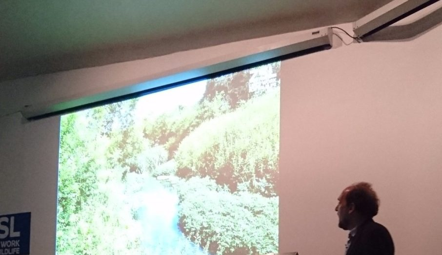 A group of Paper Round employees with a keen interest in our local ecology attended a London Zoo evening named State of the Thames. It was here that we discovered there is hope for the River Thames. It is in fact home to invertebrates, fish and even mammals.