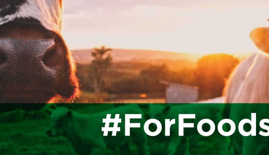 This week we launch our first campaign of 2019, #ForFoodsSake, where we'll be looking behind the scenes in the world of food waste and food sustainability.
