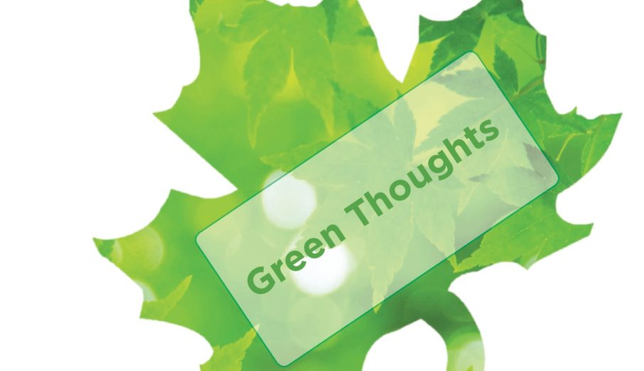 """So, each week in the office we have a """"green thought"""" (as you'll probably know if you're following our social media channels). It's just a little tip designed to try and help people lead a greener lifestyle and quite often involves saving money too."""