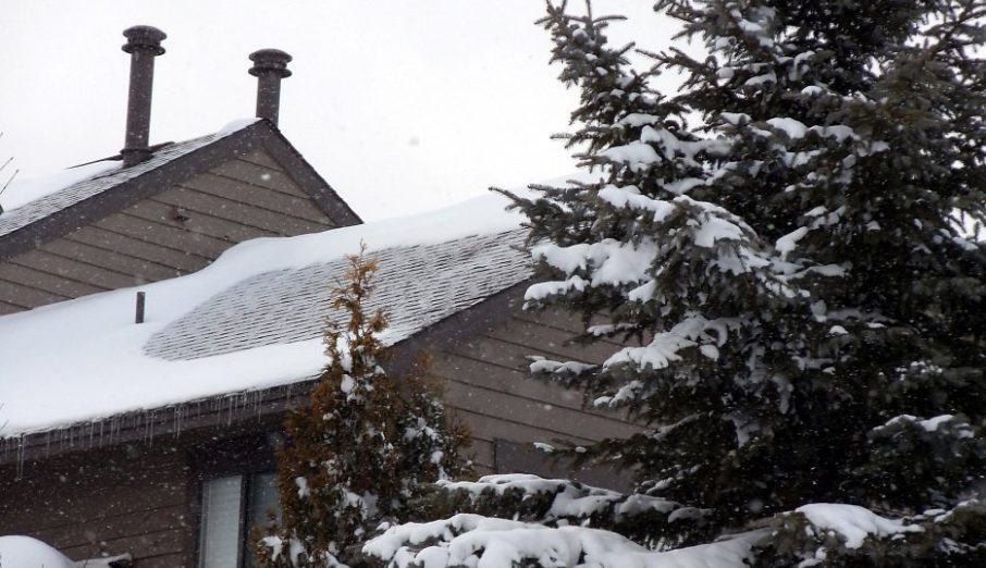 Our green thought this week is to get our homes ready for winter, but what exactly does that mean?